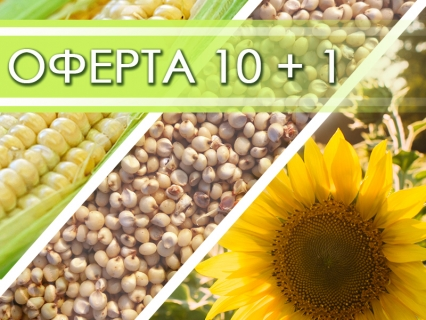 Семена Euralis 10 торби + 1 подарък