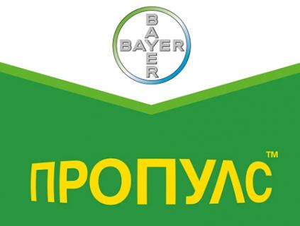 Фунгицид Пропулс – BAYER