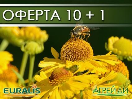 Семена за слънчоглед Euralis 10 торби + 1 подарък